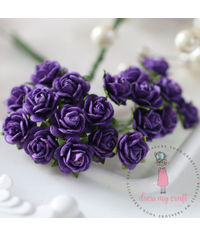 Micro Mini Roses - Purple