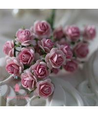Micro Mini Roses - Pink Combo