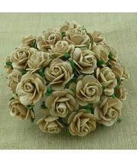 Micro Roses - Vintage