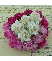 Pink/White - Wild Rose Combo