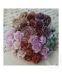 Vintage Micro Roses Combo