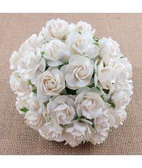 Wild Rose - White