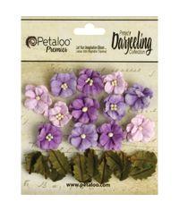 Purple Petite Flowers