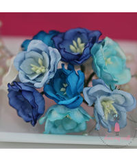 Poppy Rose - Blue Combo