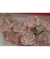 Poppy Rose - Pink