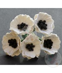 Poppy Flower with Pollens - White/Cream