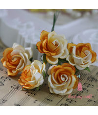Curved Roses 35 MM - Orange Combo