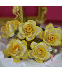 Curved Roses 35 MM - Yellow