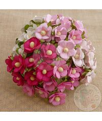 Retro Flower - Pink Combo