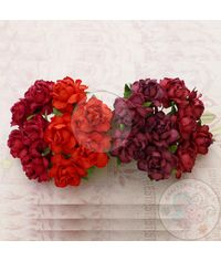 RED - Twisted Roses Combo