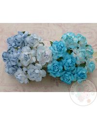 BLUE TONE - Twisted Roses Combo