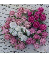 Pink Tone - Micro Roses Combo