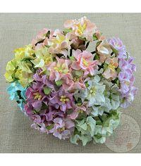 MINI GARDENIA FLOWERS - MIXED COLOUR MINIATURE