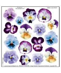 Pansy - Printed Plastic sheet
