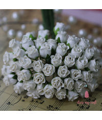 Twisted Rose Buds - Ivory