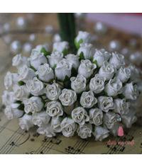 Twisted Rose Buds - Ivory