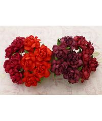 Twisted Roses Combo - Red Tone