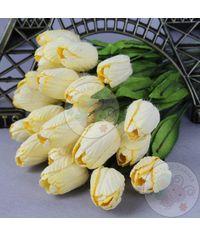 Lemon Yellow - Tulips