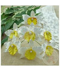 White and Yellow - Orchids Combo