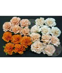 Peach/Orange - Carnations Combo