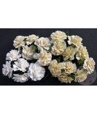 White/Cream - Carnations Combo