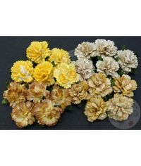 Earth Mulberry - Carnations Combo