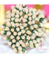 Micro Rose Buds - Cream