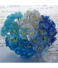 Blue/Aqua - Sakura Combo