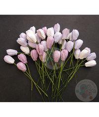 Purple/Lilac Tone - Tulip Buds Combo