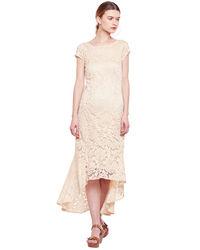 Daisy Hi-Lo Lace Dress