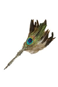 Rubinato Quill Pen Md06 Peacock Feather