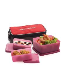 EAT IN LUNCH BOX WITH BAG  || SIGNORAWARE LUNCH BOX