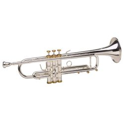 SG Musical Dizzy Gillespie 1917-1993 Gold Trim Trumpet  Freebie