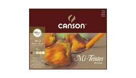 Canson Mi-Teintes 160 GSM 32 x 41 cm Album of 30 Honeycomb & Fine Grain Sheets - Earth Tones