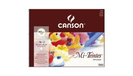 Canson Mi-Teintes 160 GSM 32 x 41 cm Album of 16 Honeycomb & Fine Grain Sheets - White