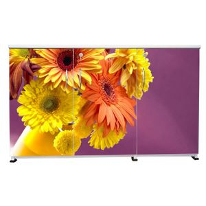 BigSmile 3 Door Multipurpose Storage Cabinet - Blossoms (2.5ft x 4ft) Glossy Finish