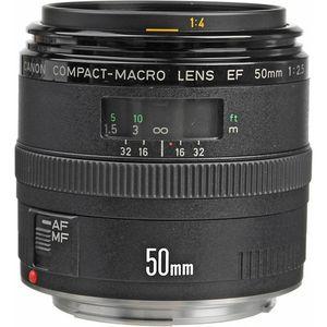 Canon EF 50mm f/2.5 Compact Macro Lens (Black, Macro Lens)