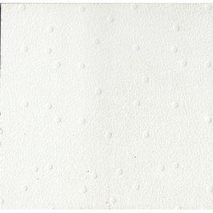 Rebecca   Frosty White 105 CL