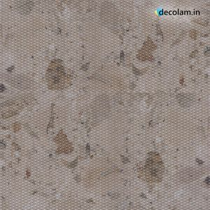 Rio Interior | Dots Beauty | 1223 DB | 1.25MM