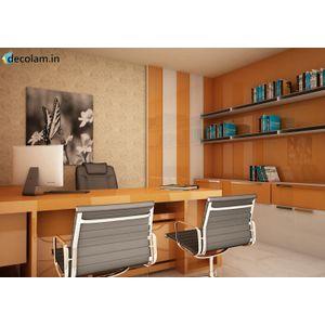 Virgo Mica | Light Orange | 1515 SHG| 1MM | Office