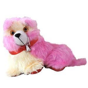 Cute Dog Teddy (small)