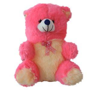 Pink  Cute Small Teddy Bear