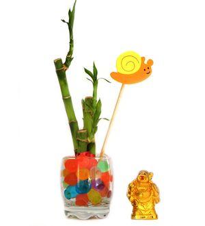 3 Stalk Bamboo Lucky Buddha Combo