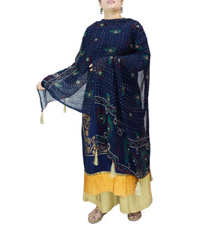 Chiffon Blue Feather Printed Dupatta