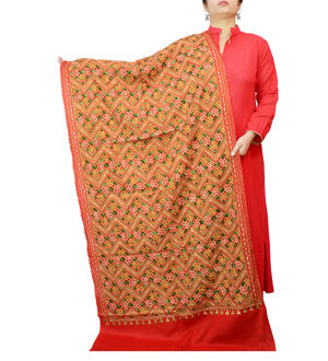 Kashmiri Pure Wool Traditionally Embroidered Red Multi Color Stole