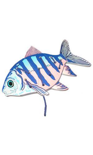 Lacing Fish