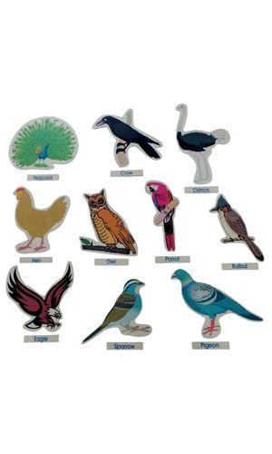Birds Cut Outs Jumbo