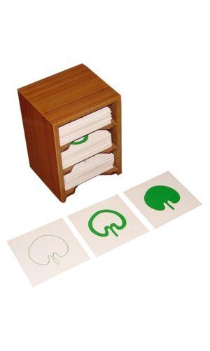 Botany Form Cards