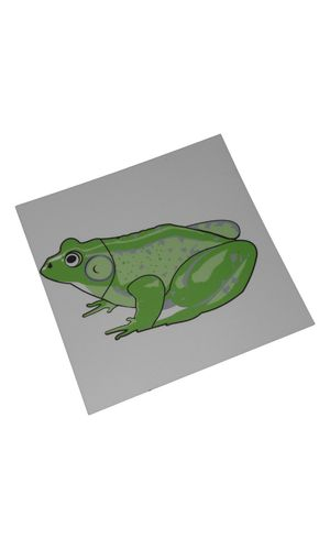 Control Card - Frog Puzzle