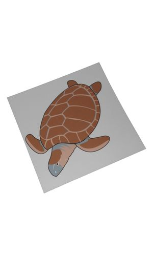 Control Card - Tortoise Puzzle